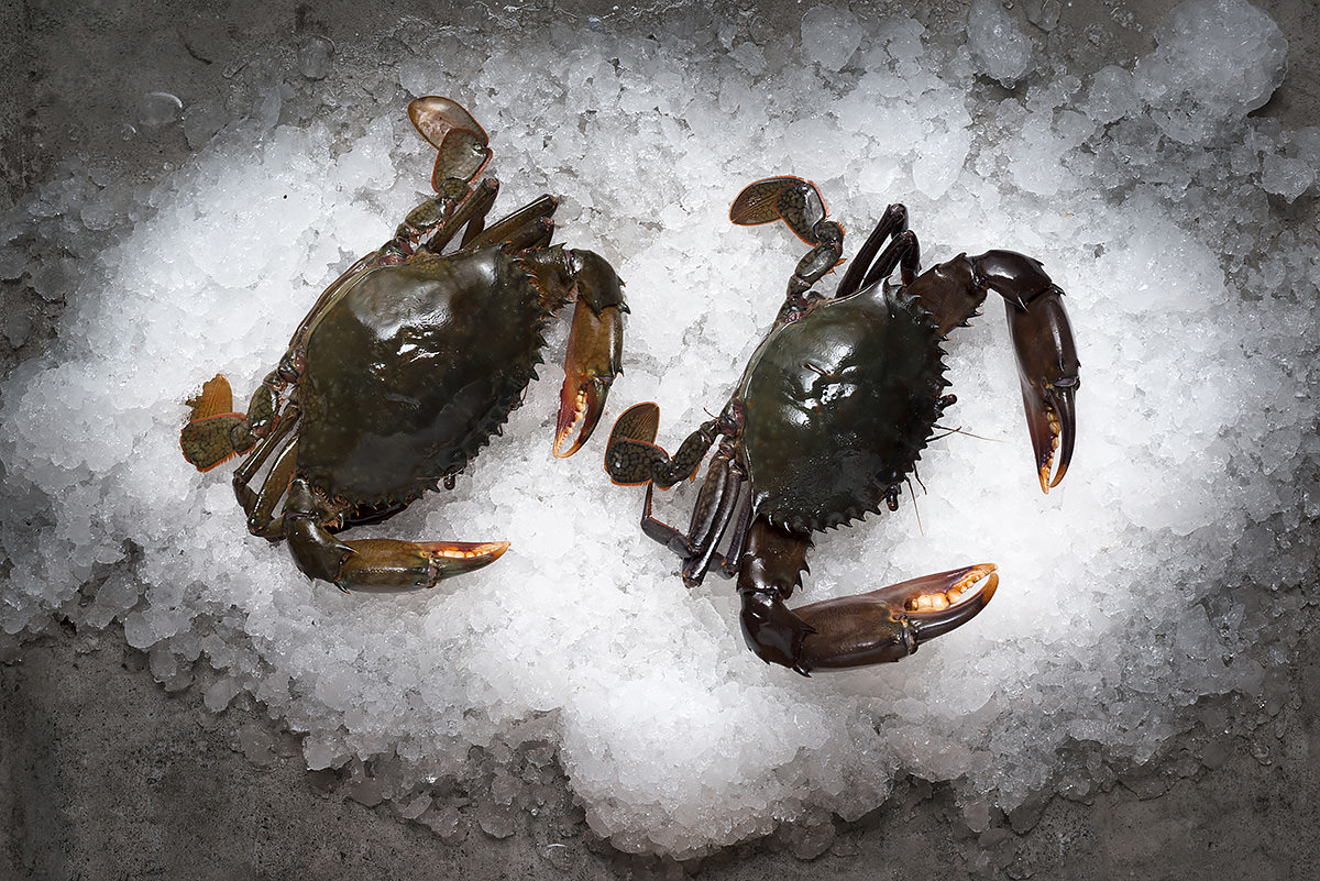 Black Crab Related Key...